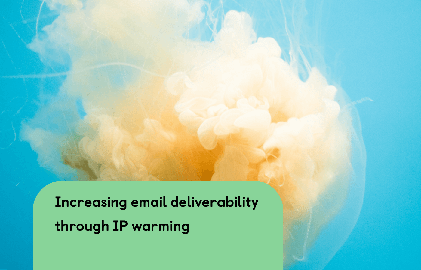 How to increase email deliverability through IP warming