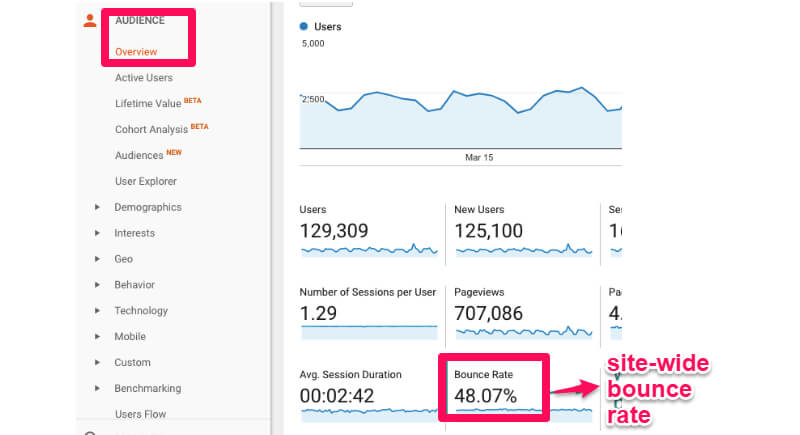 Website audience overview bounce rate
